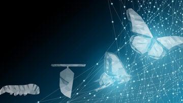 Использование информационно-коммуникационных технологий в деятельности федеральных органов исполнительной власти